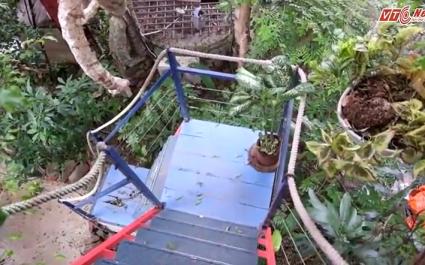 Mục sở thị ngôi nhà trên cây đầy đủ tiện nghi giữa lòng Hà Nội